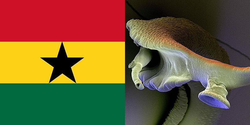 schistosomiasis ghána