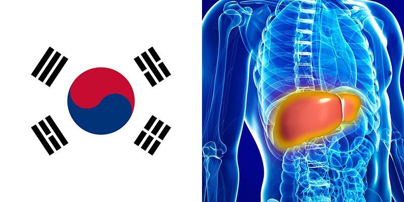 Liver disease in south korea publicscrutiny Gallery